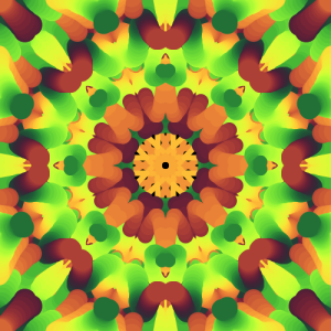 kaleidoscopePainter (1)